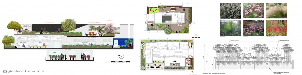 Roof Garden Floor Plan. Tour The Grass Roots House With