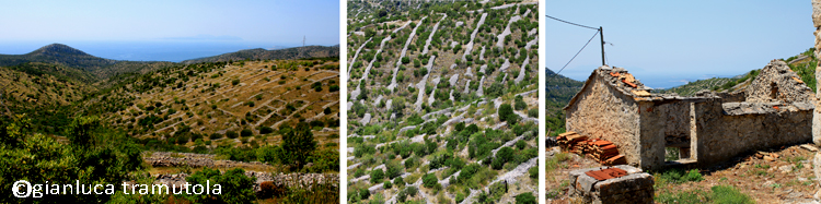 landscape transformation paesaggio trasformazione