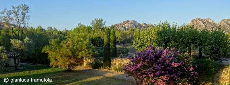 giardino provenza garden design mediterraneo