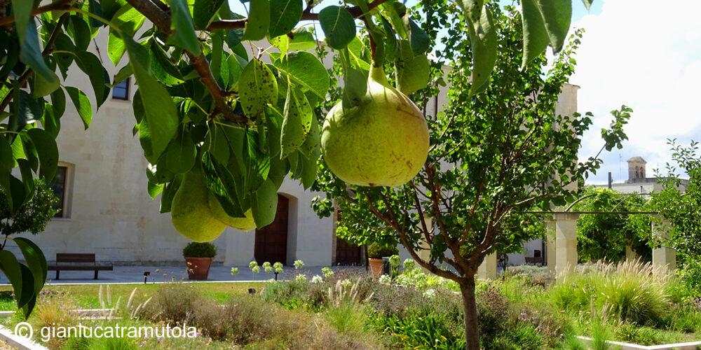 giardino ogni bene Lecce Gianluca Tramutola